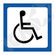 131109VHH Handicap 100x100mm